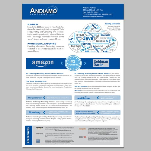 professional corporate resume brochure for it
