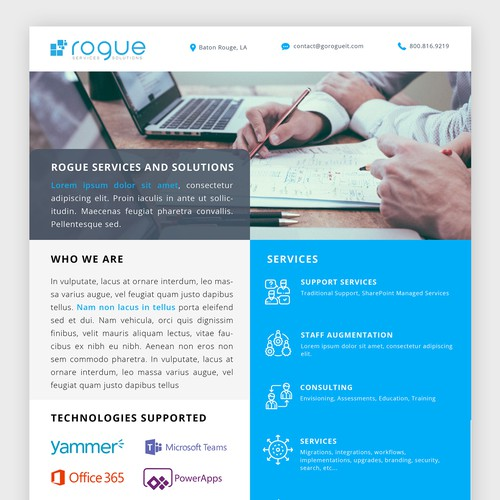 Rogue Services and Solutions - One Pager   Postcard, flyer