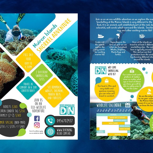 Design an eye catching flyer for snorkel tours on the Ningaloo Reef! Design by Asyaa Design