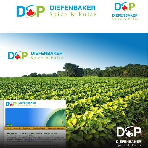 Diseño finalista de Deny Branding