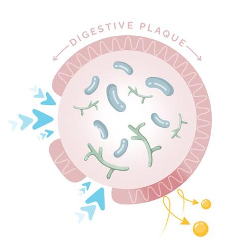 Runner-up design by Lera Balashova