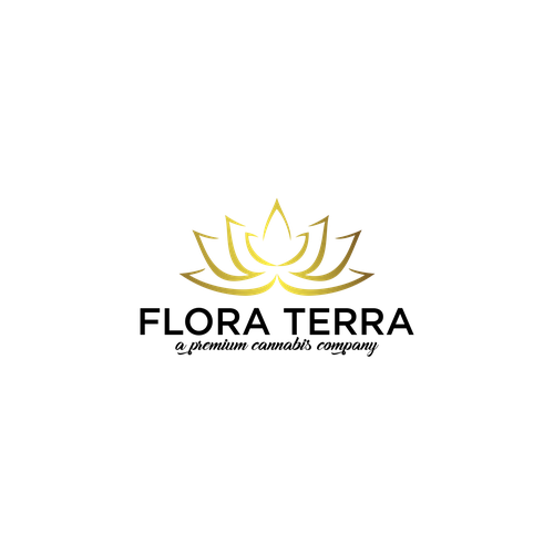 Diseño finalista de (P.E.K.K.A)