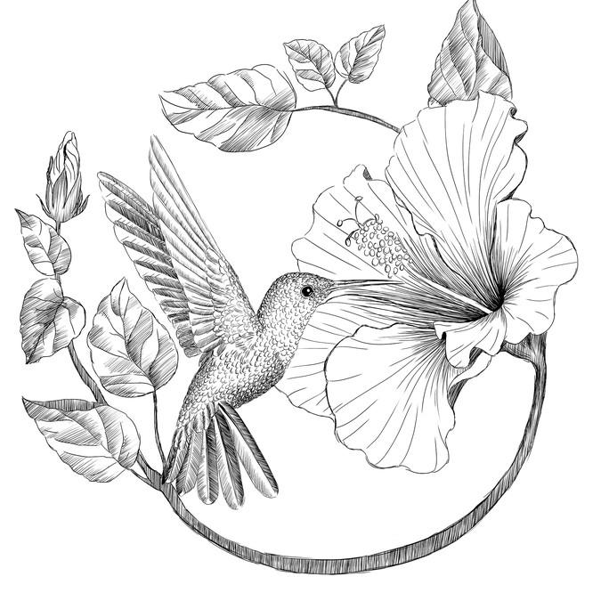Diseño ganador de Homa Jenabzadeh