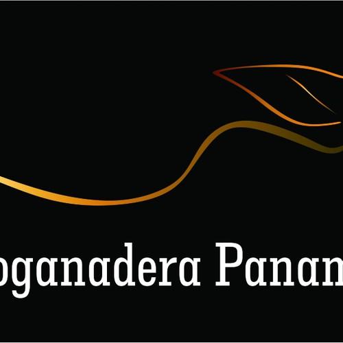 Runner-up design by ricardosouzabrum