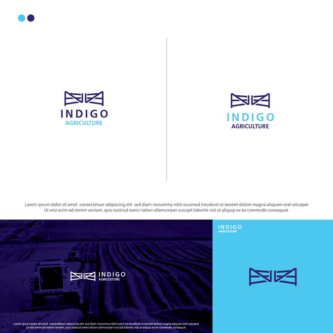 Winning design by Distro