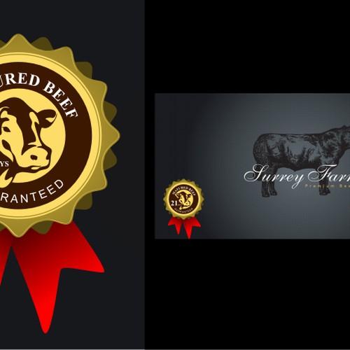 Diseño finalista de DORARPOL™