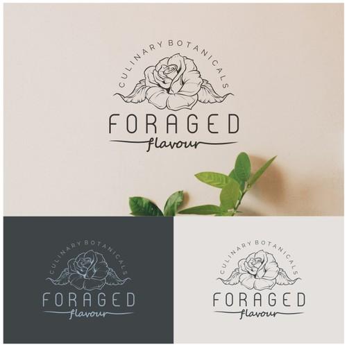 Diseño finalista de AnoRaga