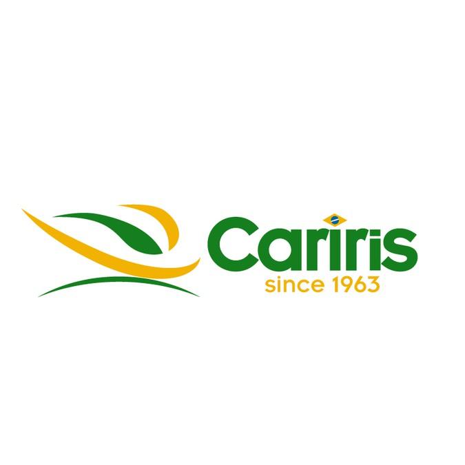74fea04fbf21e Créer le logo pour Cariris (Tongs brésiliennes débarquant sur le marché  français)