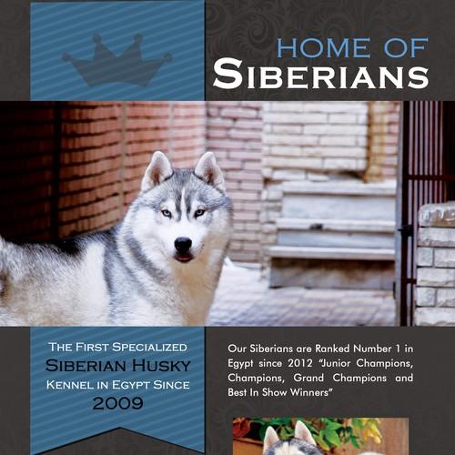 Design finalisti di Farbalab