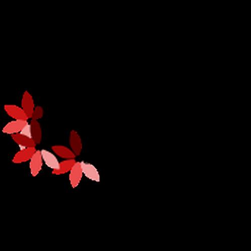 Runner-up design by Hurairah Malik