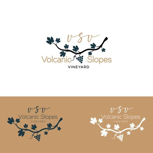 Runner-up design by Veksi