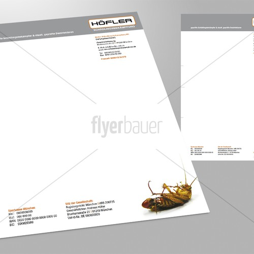 Diseño finalista de flyerbauer