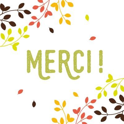 merci_1.jpg