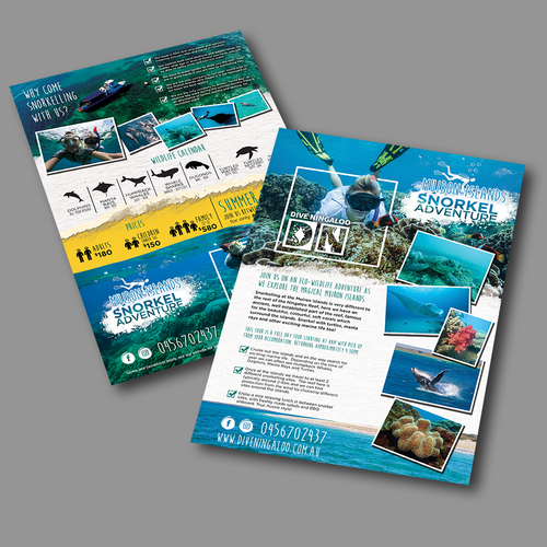Design an eye catching flyer for snorkel tours on the Ningaloo Reef! Design by MYTHOS studio