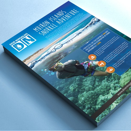 Design an eye catching flyer for snorkel tours on the Ningaloo Reef! Design by websmartusa