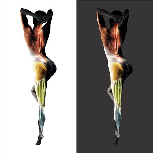 Diseño finalista de BibiBug