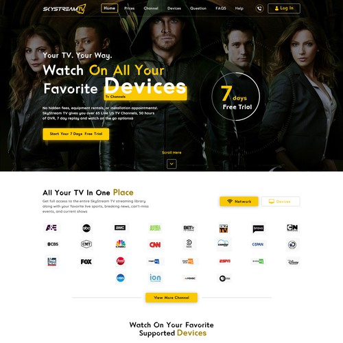 NEW Streaming Service needs vibrant sleek website design