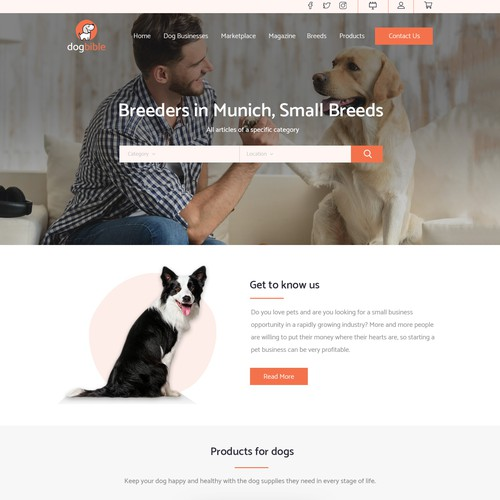 Webdesign for online dog platform marketplace magazine