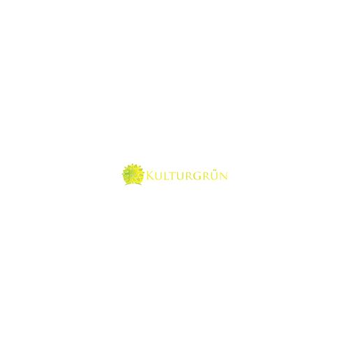 Design finalisti di kang_pARTmo_javanese