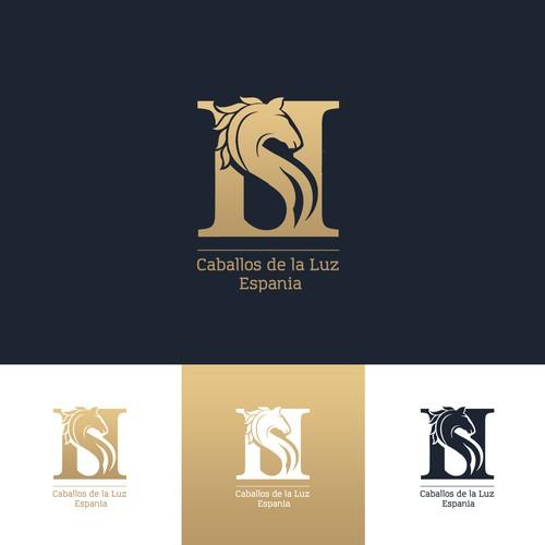 Runner-up design by Solomija