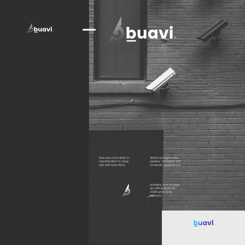 Buavi, the new security company is looking for branding Design por !s
