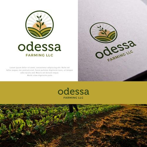 Design finalista por Project 4