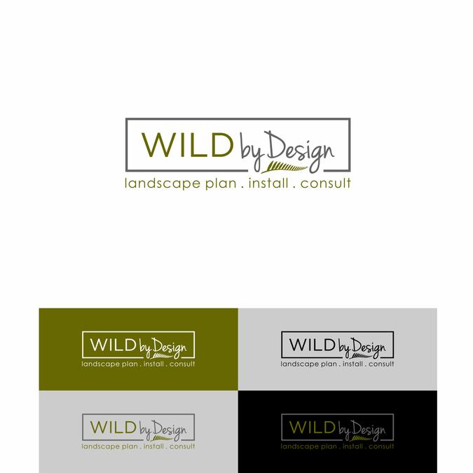 Design vincitore di pur wadi