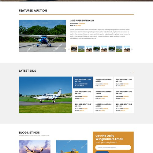 Airplane Auction Website Web Page Design Contest 99designs