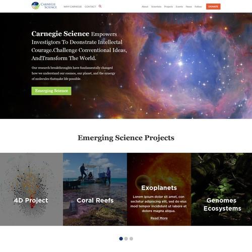 Diseño finalista de Designbug786