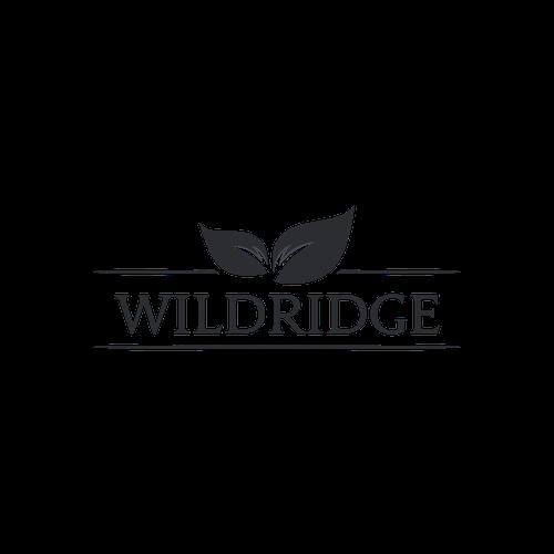 Diseño finalista de wild maverick