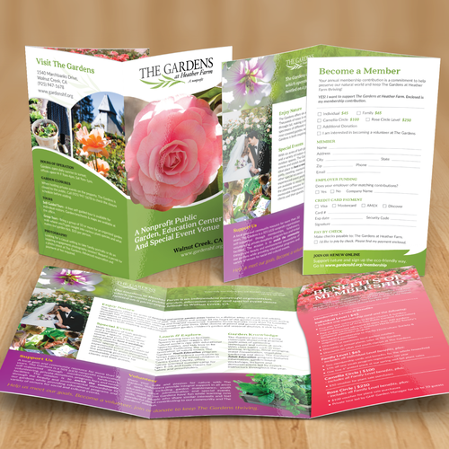 a brochure to attract visitors to The brochures include descriptions of volcano restaurants and  are amending  their business models in order to attract new visitors.