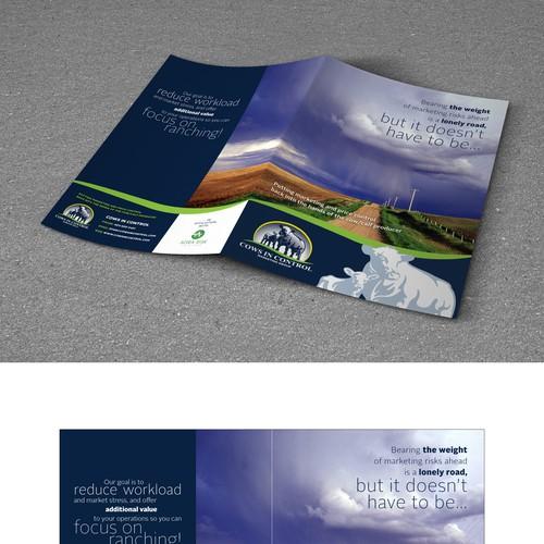 Diseño finalista de fabee.zz