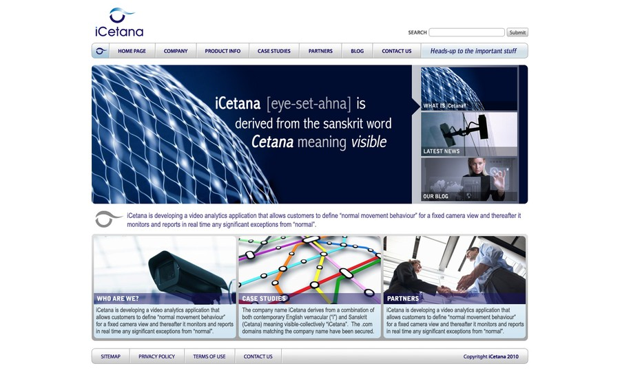 design a new website homepage web page template for icetana